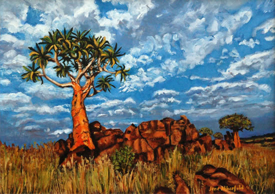 Quiver Tree Namaqualand - South Africa Art Gallery