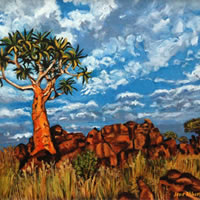 Quiver Tree Namaqualand – South Africa Art Gallery